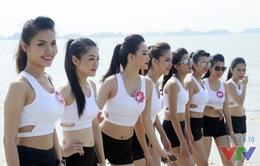 Ngắm vẻ đẹp khỏe khoắn của dàn người đẹp Hoa hậu Biển Việt Nam 2016