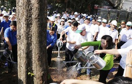 Hưởng ứng ngày môi trường thế giới: Hà Nội phấn đấu có một triệu cây xanh vào năm 2020