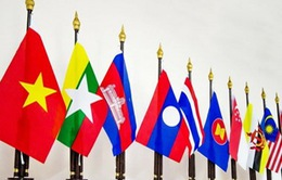 Việt Nam đóng góp quan trọng vào quá trình phát triển của ASEAN