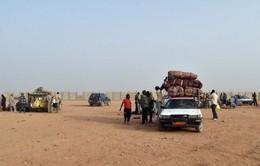 Niger phát hiện 34 thi thể trên sa mạc