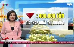 """""""Ký nghị định thư mới, lượng gạo Việt xuất sang Trung Quốc khó tăng"""""""