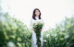 Mai Thu Huyền đẹp dịu dàng giữa vườn cúc họa mi