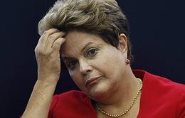 Hạ viện Brazil họp phiên toàn thể xem xét luận tội Tổng thống Dilma Rousseff
