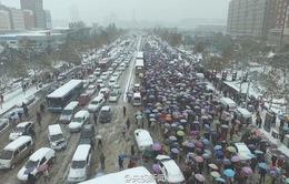 Giao thông cộng cộng được ưa chuộng tại Bắc Kinh, Trung Quốc