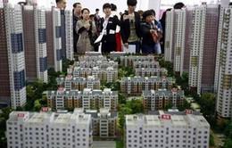 Năm 2016, giá thị trường bất động sản sẽ tăng từ 5-10%