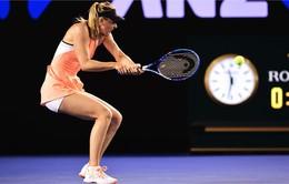 Úc Mở rộng 2016, đơn nữ: Sharapova và Serena William dễ dàng giành vé đi tiếp