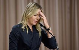 Sharapova thừa nhận dùng doping, dư luận dậy sóng