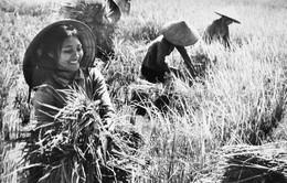 Người phụ nữ Việt Nam trong ca khúc
