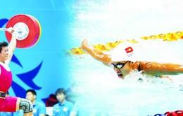 Thể thao Việt Nam: Chào mùa xuân mới