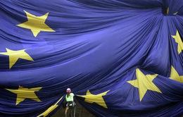 """Anh rời EU: Một cuộc """"tháo chạy"""" sắp bắt đầu?"""