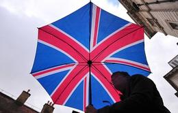 Số lượng người Anh muốn bỏ phiếu lại việc rời EU tăng chóng mặt