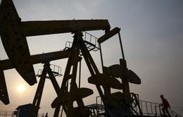 Chuyên gia nhận định OPEC sẽ không giảm sản lượng trong nửa đầu năm 2016