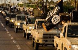 IS tăng cường lực lượng tại Libya