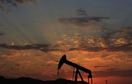 """Giá dầu xuống đáy, Nga đối diện nguy cơ """"thủng"""" ngân sách"""