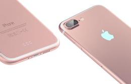 iPhone 7 và iPhone 7 Plus đều được tích hợp chống rung quang học