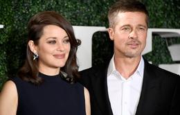 Marion Cotillard: Brad Pitt là một người đàn ông tốt