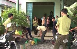 Khánh Hòa: Phát hiện vụ mua bán số lượng lớn động vật hoang dã