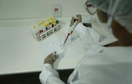 Phát hiện hoạt chất kháng virus Zika