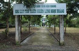 Bế tắc di dời dân ở khu bảo tồn Lung Ngọc Hoàng (Hậu Giang)