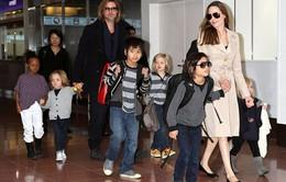 Brad Pitt khóc ròng khi gặp lại các con sau 3 tuần chia cắt