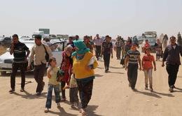 Iraq: IS nhắm mục tiêu vào dân thường tại Mosul
