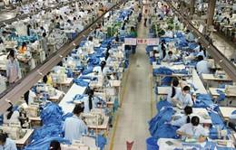 Năng suất lao động suy giảm - Thách thức hội nhập của Việt Nam