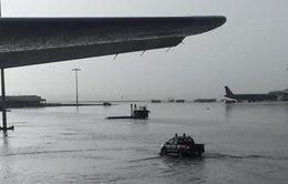 Chính thức giao thực hiện dự án xây hồ chống ngập sân bay Tân Sơn Nhất