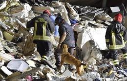 Italy điều tra các đối tượng liên quan đến thiệt hại động đất
