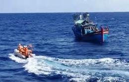 Bộ Tư lệnh Cảnh sát biển Vùng 4 cứu nạn tàu gặp nạn trên biển
