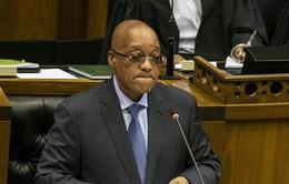Tổng thống Nam Phi vướng nghi án tham nhũng