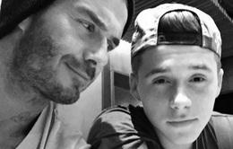 Con trai của Beckham làm ngơ với phim Hollywood