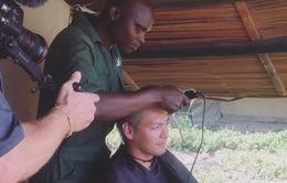 MC Phan Anh xuống tóc, kêu gọi bảo vệ động vật hoang dã