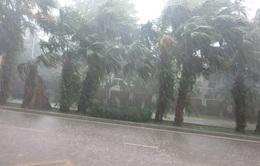 Nam Trung Bộ tiếp tục mưa lớn trên diện rộng