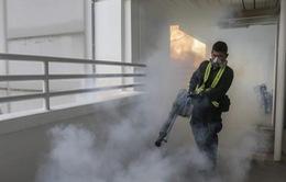 Singapore xác nhận 17 ca nhiễm mới virus Zika