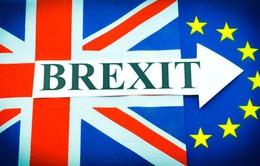 """CH Ireland sẽ phủ quyết Brexit nếu Anh không đảm bảo """"biên giới mềm"""""""