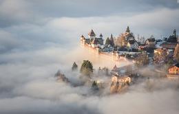 """Những bức ảnh đẹp đến """"nghẹt thở"""" lọt top cuộc thi National Geographic"""