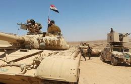 Thành trì cuối cùng của IS tại Iraq bị công phá