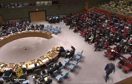 Hội đồng Bảo an LHQ bỏ phiếu về việc đưa quan sát viên đến Aleppo