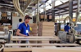 Xuất khẩu gỗ sang Anh và EU chưa bị ảnh hưởng bởi Brexit