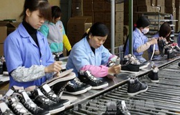 Doanh nhân & Hội nhập: Bài toán về nguyên phụ liệu ngành da giày (15h35, VTV1)