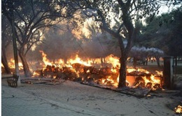 Ấn Độ: Đụng độ giữa cảnh sát và người biểu tình, 24 người thiệt mạng