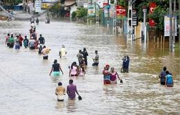 Hơn 90 người thiệt mạng vì lũ lụt và lở đất tại Sri Lanka