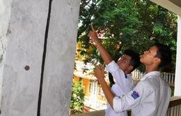Trường THPT Trần Nhân Tông, Hà Nội xuống cấp nghiêm trọng