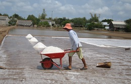 Bến Tre tồn kho hơn 64.000 tấn muối