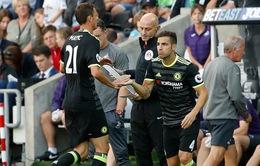 Conte: Fabregas sẽ được ra sân nếu đủ tốt