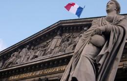 Hàng trăm nữ chính trị gia tại Pháp từng bị quấy rối tình dục
