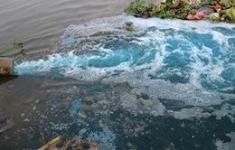 Quảng Ninh đình chỉ hoạt động nhà máy gây ô nhiễm môi trường