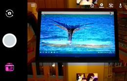 Google Pixel và Pixel XL gặp sự cố camera sau