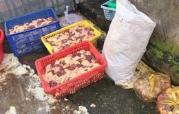 Phát hiện 400kg thịt gà ướp hàn the, chế biến cạnh cống tại Cần Thơ