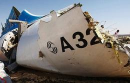 Ai Cập lần đầu thừa nhận máy bay Nga rơi do khủng bố